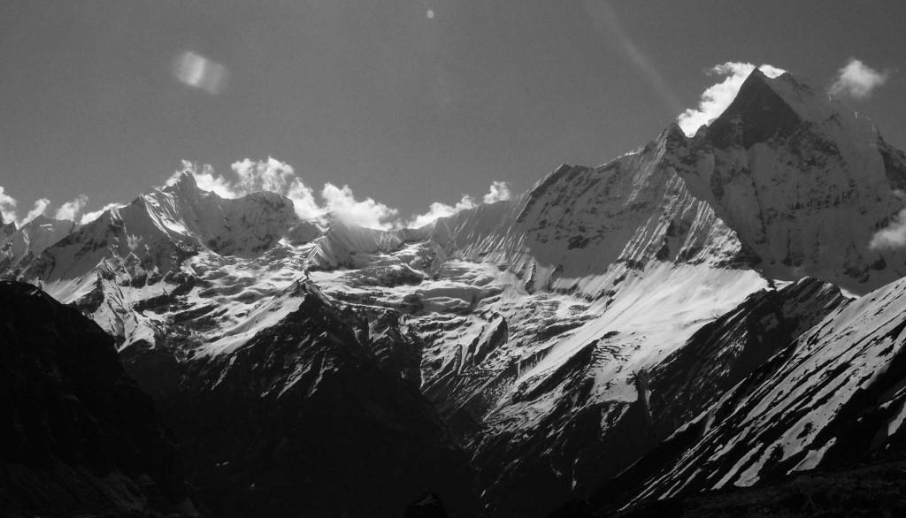 About TIMI Himalaya
